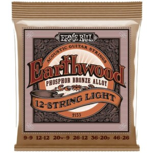 Ernie Ball 2153 12-String Earthwood Phosphor Bronze Acoustic-0