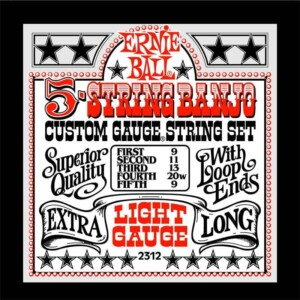 Ernie Ball 2312 Stainless Steel Banjo Light-0