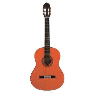 גיטרה קלאסית Eko CS10-0
