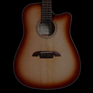גיטרות אקוסטיות 12 מיתרים