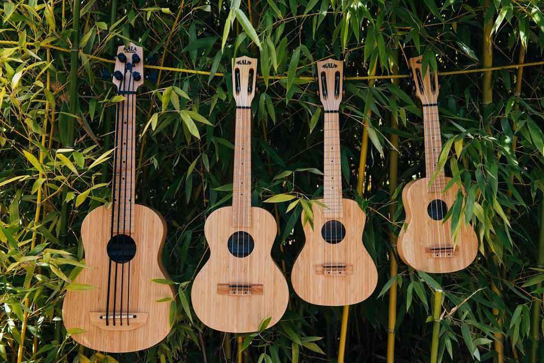 משפחת יוקוליליס Kala Bamboo
